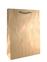 Brown Paper Bags with Handles – Medium