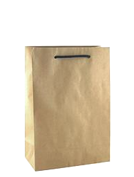 Brown Paper Bags with Handles – Junior