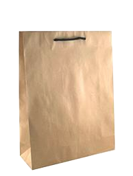 Brown Paper Bags with Handles – Midi