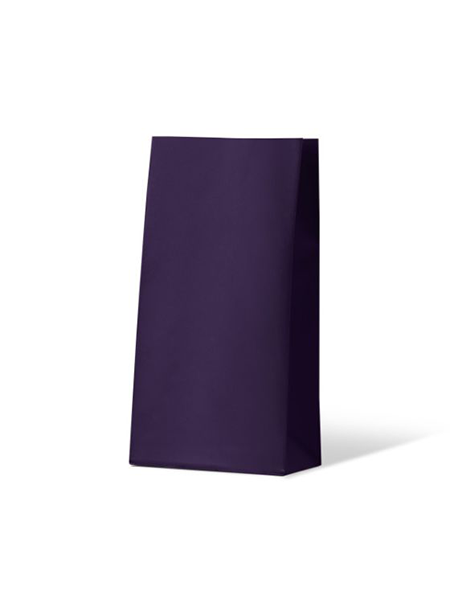 Colourful Gift Paper Bag - Medium - Passion Purple