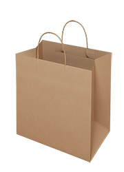 Brown Kraft Paper Bag - Takeaway Medium