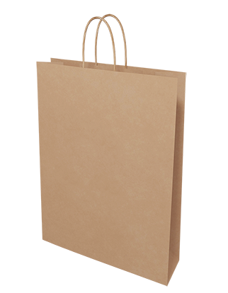 Brown Kraft Paper Bags - Medium