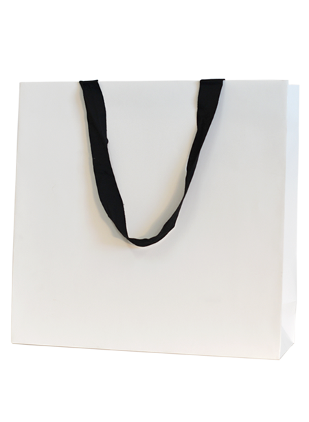 Premium Deluxe Gloss Paper Bags - Large